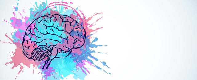 Gotowa lekcja: how does our brain work?